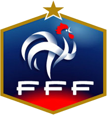 france football federation logo soccer